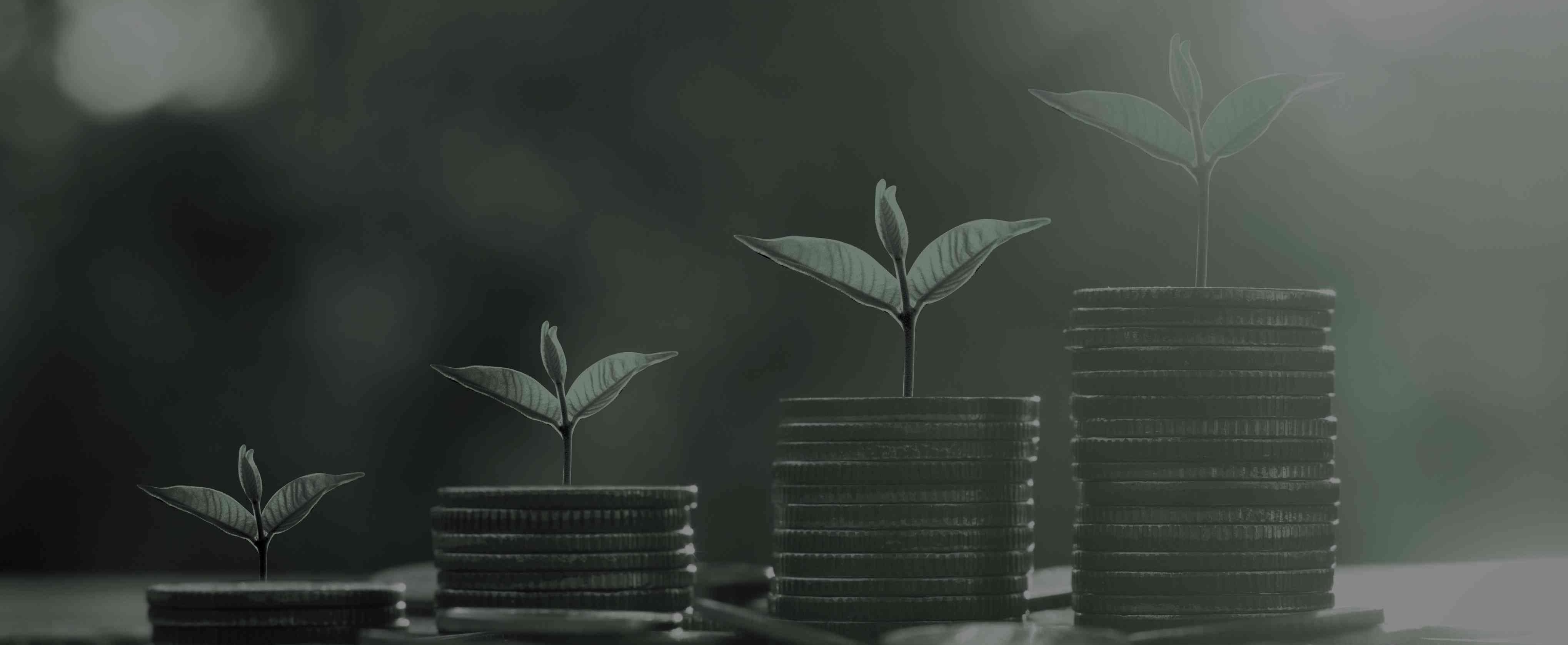 reliable short term loans blog
